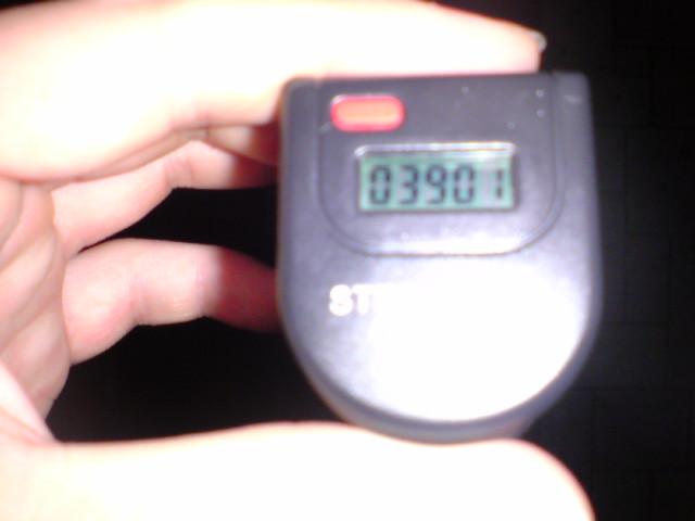 3901歩